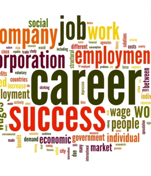 career-anchors-_a-suggestion-for-it-career-development-
